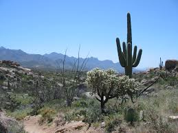 Best Places to Retire Arizona