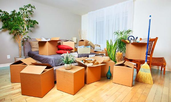 downsizing experts for seniors