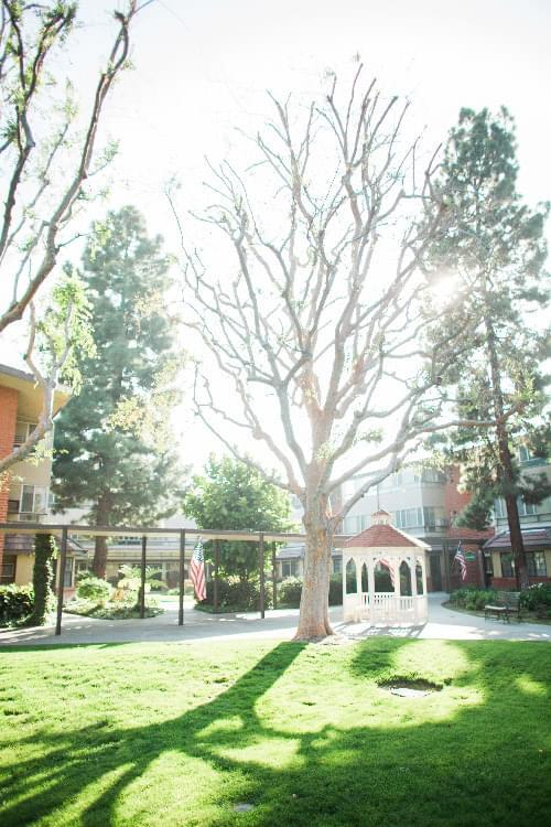 Photo of Rowntree Gardens, Assisted Living, Nursing Home, Independent Living, CCRC, Stanton, CA 7