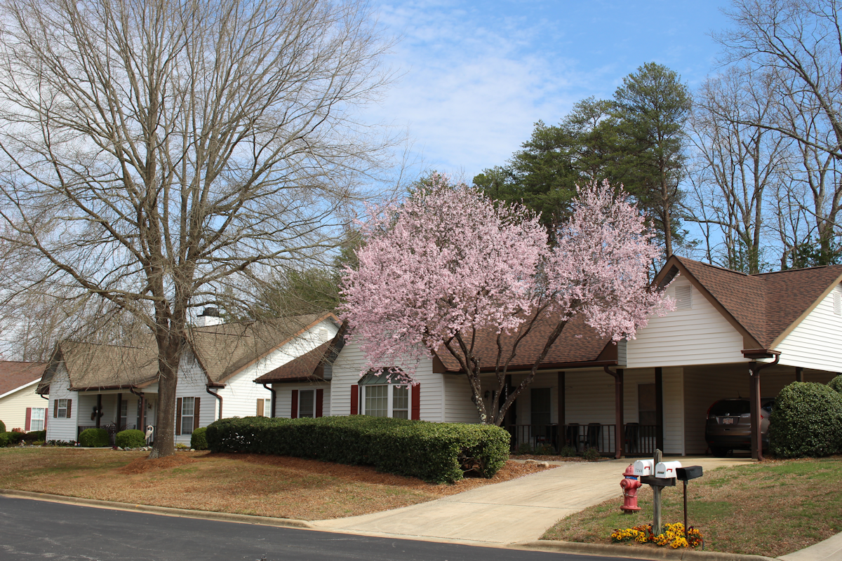 Photo of Countryside Village Retirement Community, Assisted Living, Nursing Home, Independent Living, CCRC, Stokesdale, NC 4